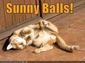 Sunny Balls!