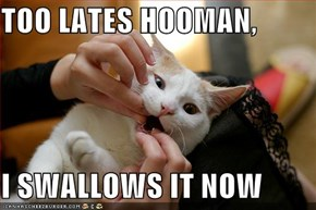 TOO LATES HOOMAN,  I SWALLOWS IT NOW