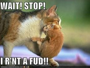 WAIT! STOP!  I R'NT A FUD!!