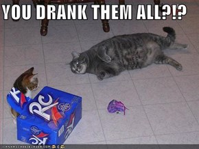 YOU DRANK THEM ALL?!?