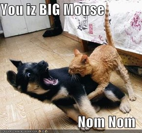 You iz BIG Mouse  Nom Nom