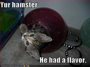 Yur hamster  He had a flavor.