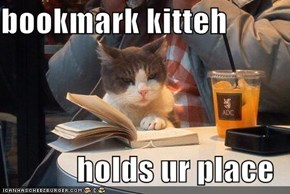 bookmark kitteh  holds ur place