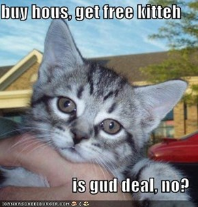 buy hous, get free kitteh  is gud deal, no?