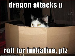 dragon attacks u  roll for initiative, plz