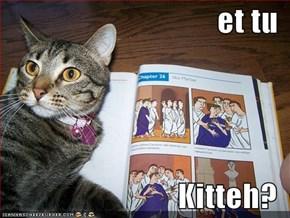 et tu  Kitteh?