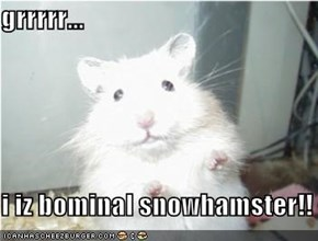 grrrrr...  i iz bominal snowhamster!!