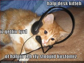 halp desk kitteh iz gettin tyrd  of halpin teh rly stoopid kustomrz