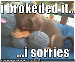 i brokeded it...  ...i sorries