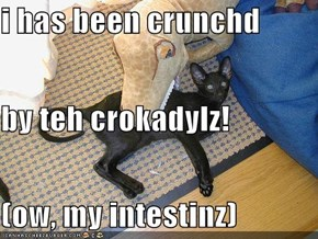 i has been crunchd by teh crokadylz! (ow, my intestinz)