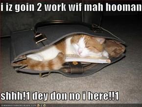 i iz goin 2 work wif mah hooman  shhh!1 dey don no i here!!1