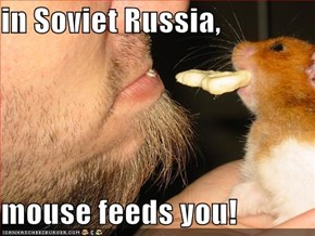 in Soviet Russia,  mouse feeds you!