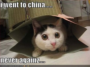 i went to china.....  never againz....