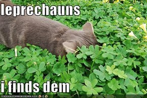 leprechauns  i finds dem