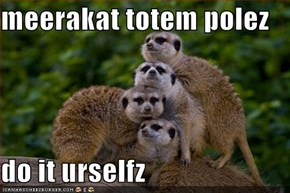 meerakat totem polez  do it urselfz