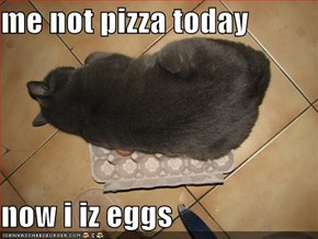 me not pizza today   now i iz eggs