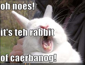 oh noes!  it's teh rabbit of caerbanog!