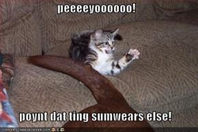 peeeeyoooooo!  poynt dat ting sumwears else!