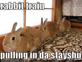 rabbit train  pulling in da stayshun!!!