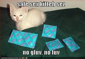safe sex kitteh sez  no gluv, no luv