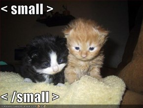 < small >  < /small >