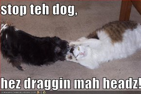 stop teh dog,  hez draggin mah headz!