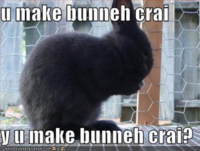 u make bunneh crai  y u make bunneh crai?