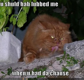 u shuld hab lubbed me  when u had da chanse