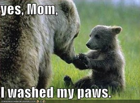 yes, Mom,  I washed my paws.