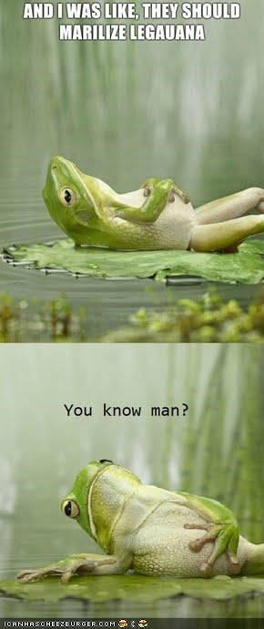 That's Just like, Your Opinion Frog
