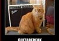 guitarfreak