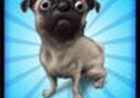 PugzRule avatar