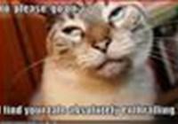 catgirl5