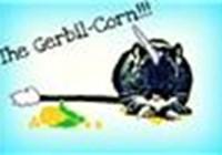 Gerbil-corn