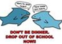 Dolphingir8