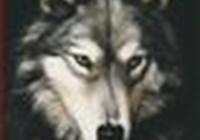 wolfspirit70