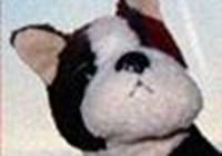 puppysblog