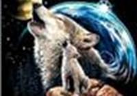 greywolfgirl
