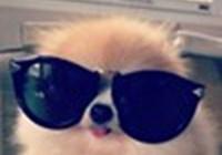 kagura110 avatar