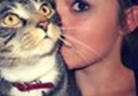 kittywhiskerzz