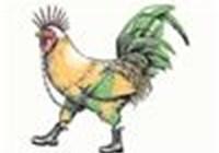 chickenfoot414