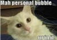 Bubbles1088
