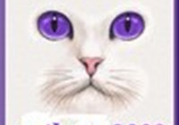catlovre2008 avatar
