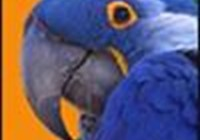 onempty avatar
