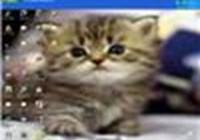 kitty1001