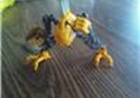 BionicleBoy