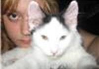 topcat1994