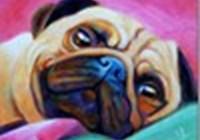 dgreenesprout avatar