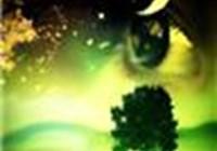 RainforestRose
