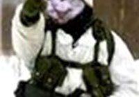 Price911 avatar